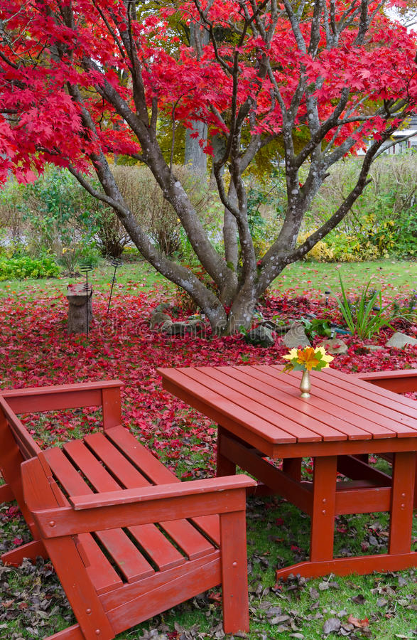 Download Beautiful Autumn's Garden Details Stock Photo - Image: 27473080