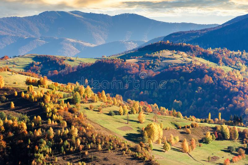Beautiful autumn scenery of a countryside royalty free stock images
