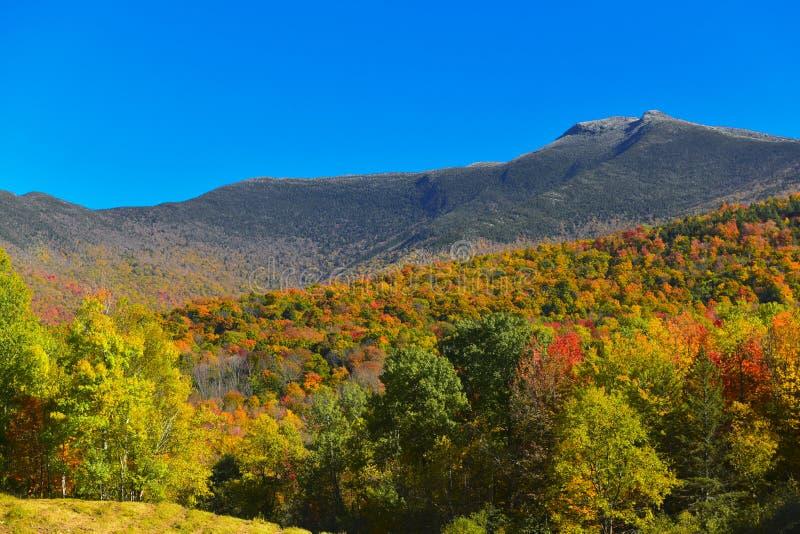 Autumn on Mount Mansfield Vermont stock images