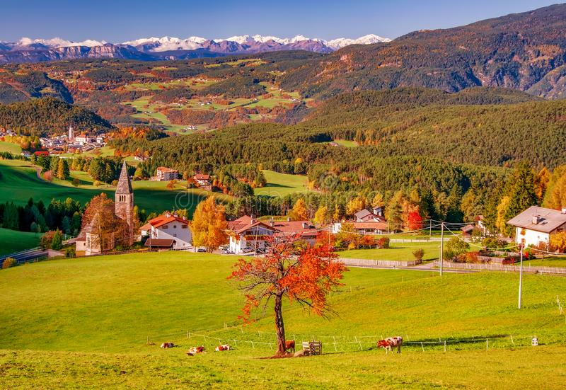Beautiful autumn scenery of San Michele and Castelrotto villages. Dolomite Alps, South Tyrol, Italy. Beautiful autumn scenery of San Michele and Castelrotto stock photography