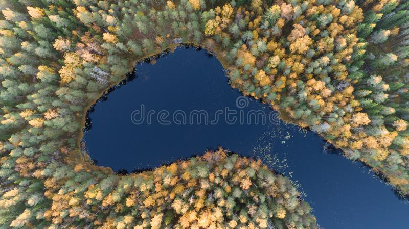 Beautiful Autumn. Small lake in the middle of the forest. Amazing colors of the treetops, Top Down Image of the wildwood. stock photo
