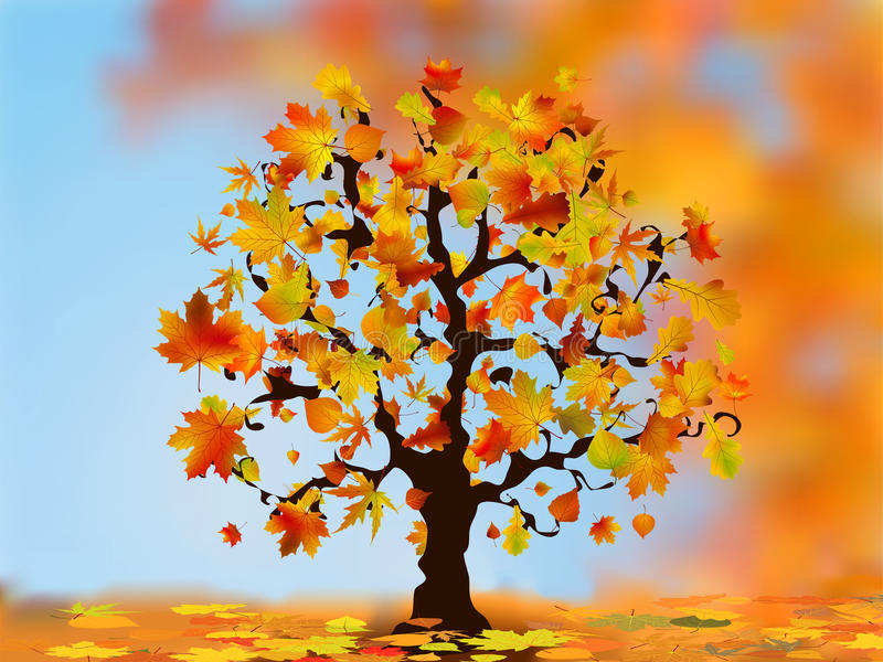 Beautiful autumn tree for your design. royalty free illustration