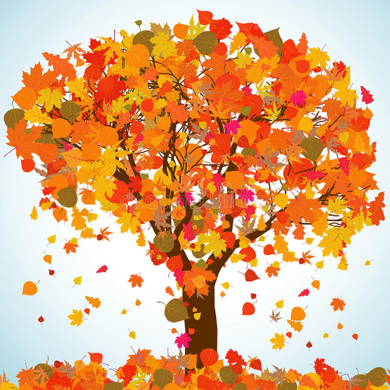 Download Beautiful Autumn Tree For Your Design. EPS 8 Stock Vector - Image: 18947260
