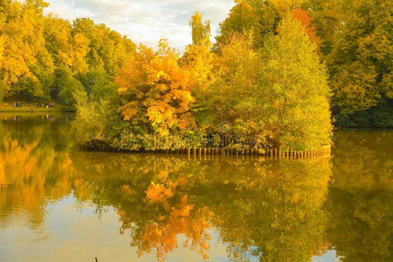 Beautiful autumn trees with yellow branches and leaves near water with reflection with nobody. Nature in the fall beautiful trees with colorful leaves stock photo
