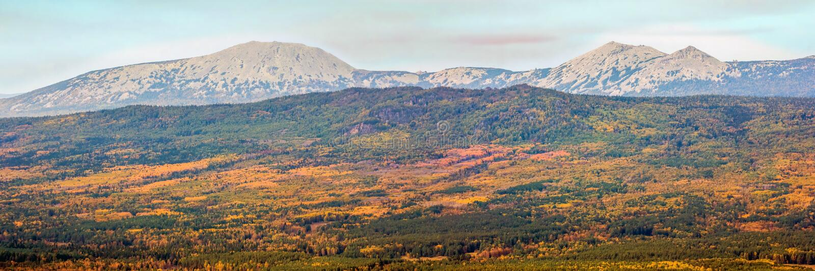Beautiful autumn Ural Taiga on the background of high mountains with the main summit of South Iremel. Beautiful autumn Ural Taiga on the background of high royalty free stock photography