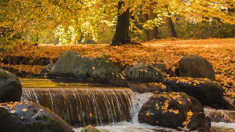 Beautiful autumn view of the waterfall with pleasant warm sunny light. Picture taken in Bad Muskau park, Saxony, Germany. UNESCO stock images