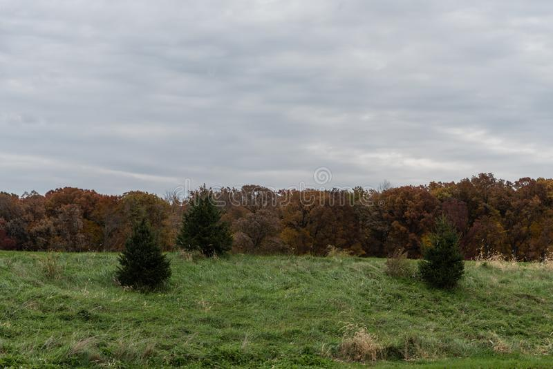 Autumn vista in West Lafayette, Indiana royalty free stock image