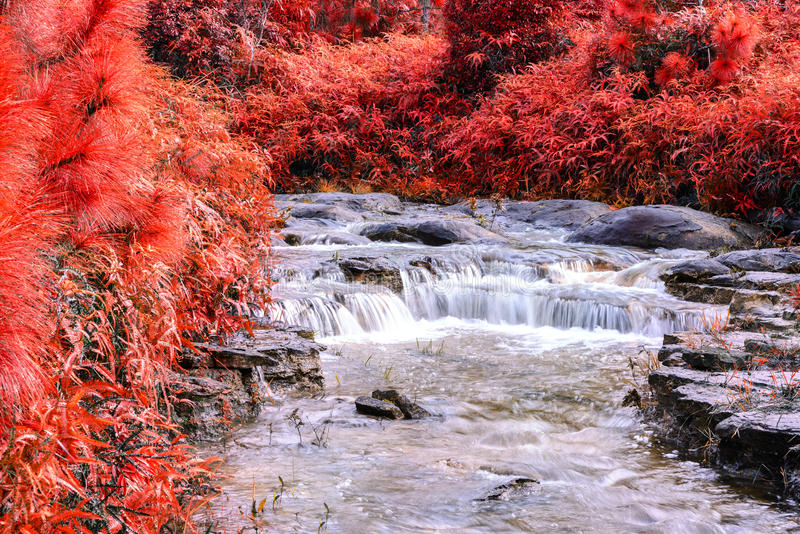 Beautiful autumn waterfall in deep forest stock photo