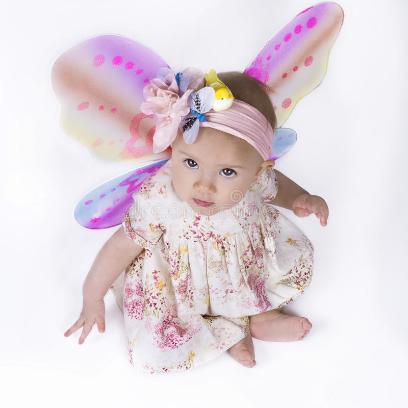 Beautiful Baby Fairy Stock Image. Image Of Isolated, Pink