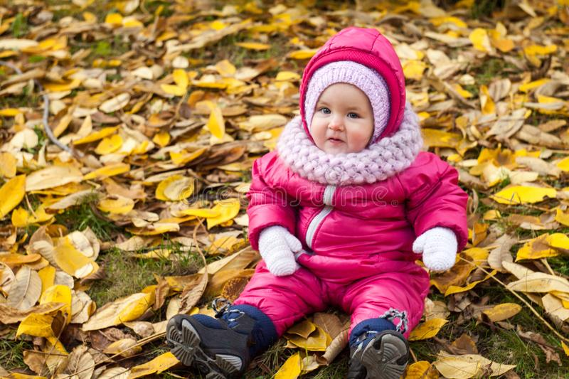 Beautiful baby girl one years old in pink jumpsuit sitting on yellow leaves - autumn scene. Toddler have fun outdoor in autumn stock photography