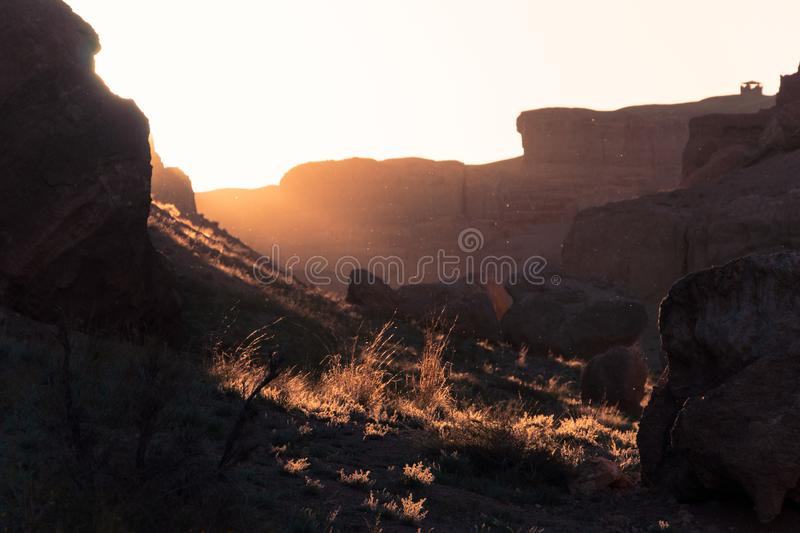 Beautiful background with flying particles and swaying grass in the canyon at sunset.  royalty free stock images