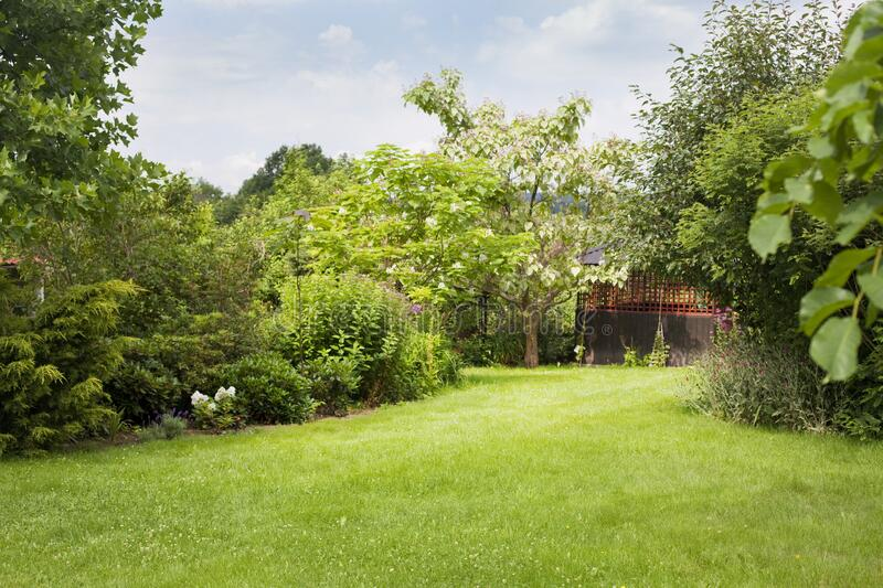 Beautiful backyard green garden landscape and fresh, green lawn background. stock images