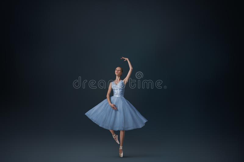 Beautiful ballet dancer stock photography