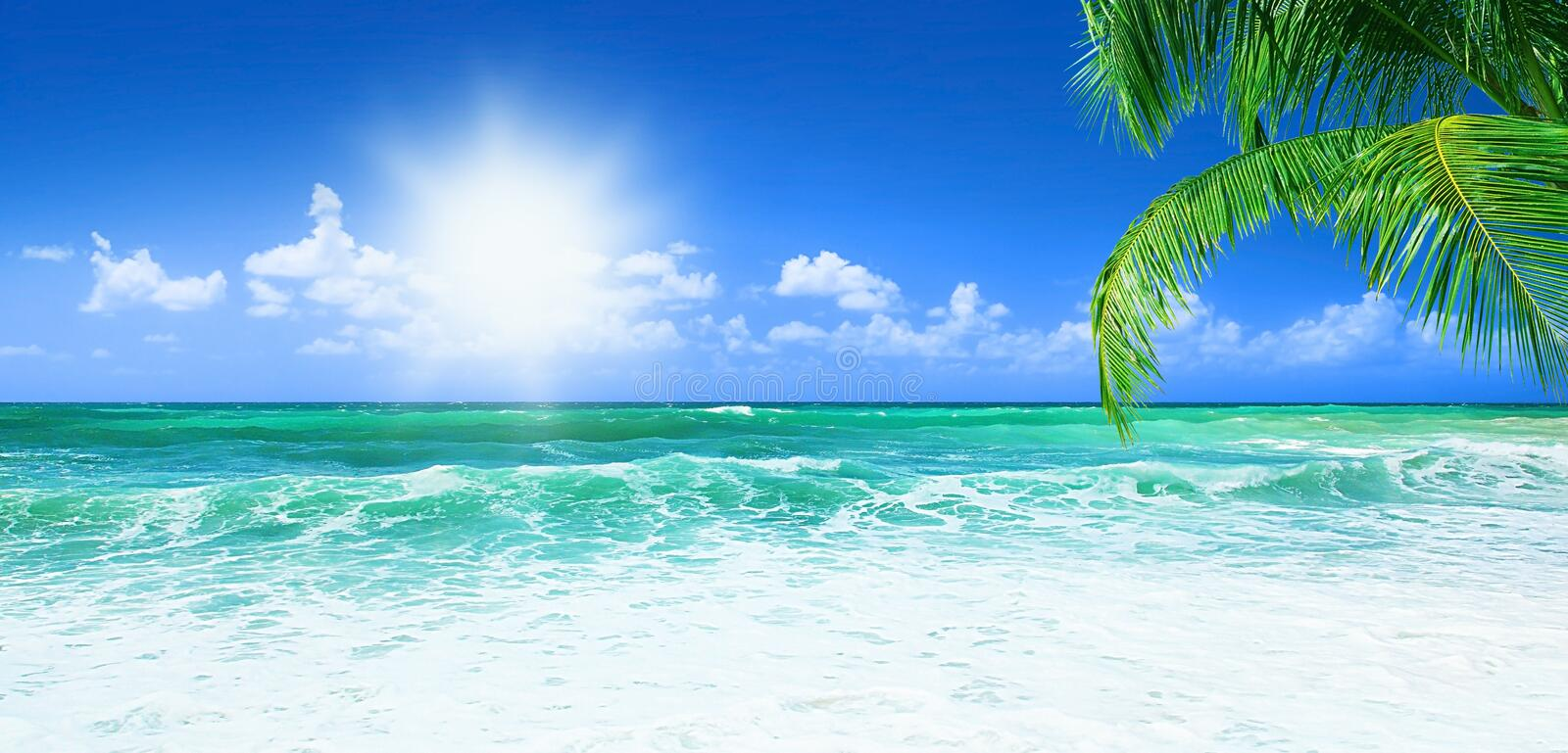 Beautiful beach royalty free stock photo