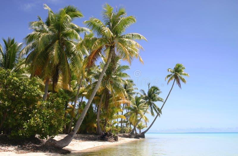 Beautiful beach. On famous travel destination Pacific Island Bora Bora. French Polynesia stock photos