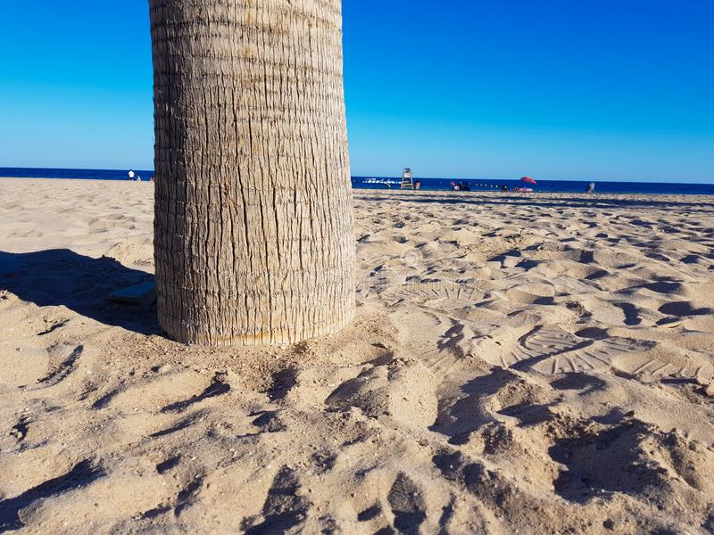 Beautiful beach in Benidorm, Spain. View of the beach with close image of palm trees and the sea with umbrellas and holidaymakers. Concept of holidays in royalty free stock photography