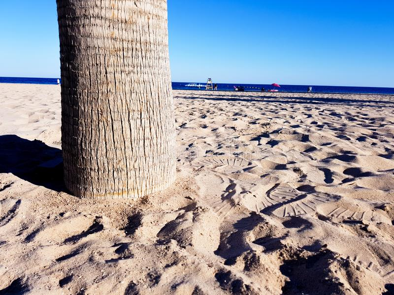 Beautiful beach in Benidorm, Spain. View of the beach with close image of palm trees and the sea with umbrellas and holidaymakers. Concept of holidays in stock photos
