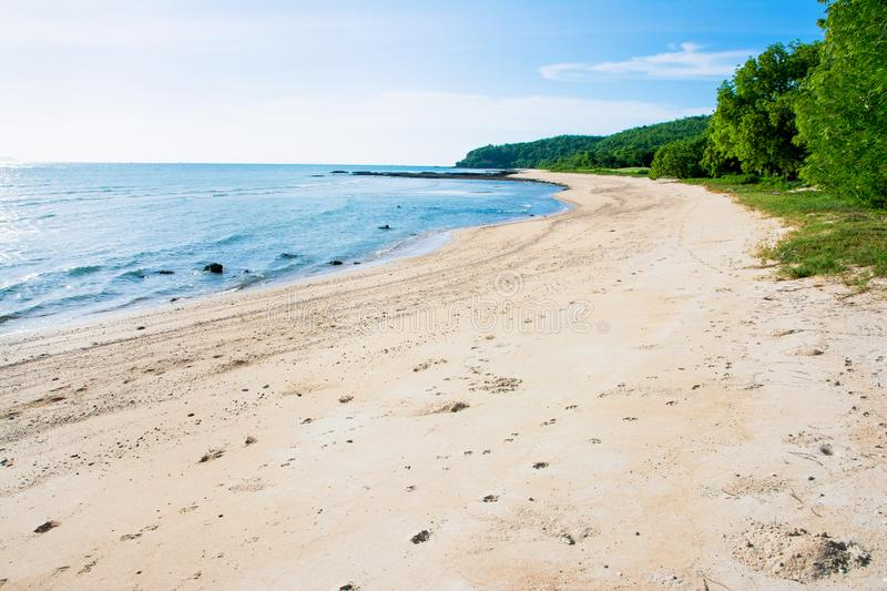 Beautiful beach with blue sky and tree background stock images