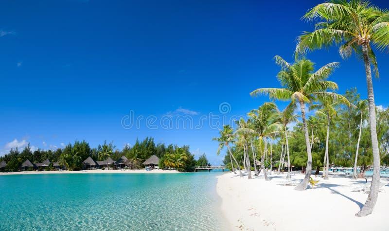 Beautiful beach on Bora Bora. Island in French Polynesia royalty free stock image