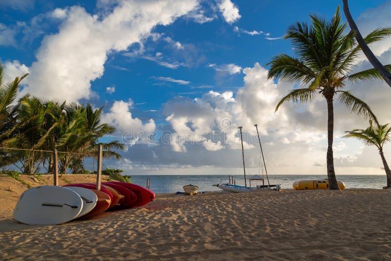 Beautiful beach in the caribbean royalty free stock photo
