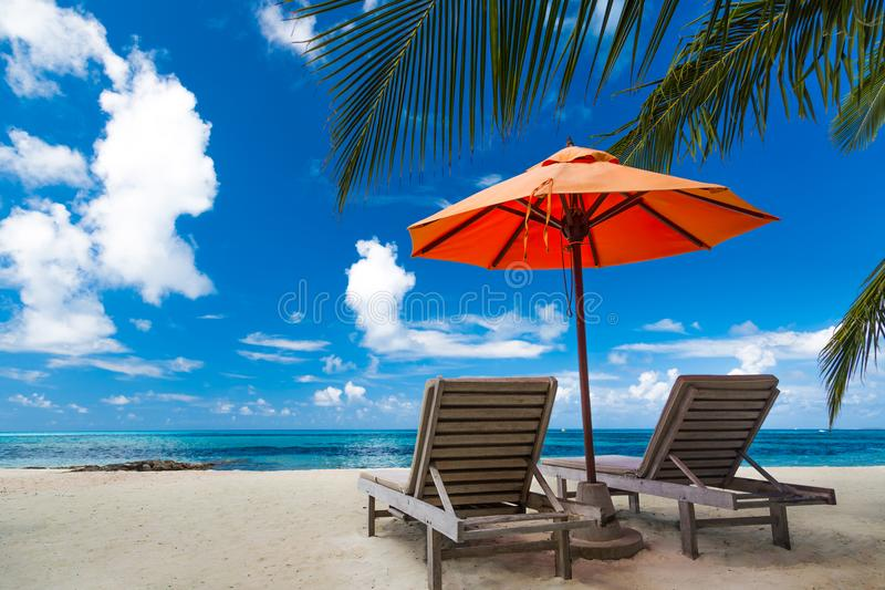 Download Tranquil Beach Scene Exotic Tropical Landscape For Background Or Wallpaper Design Of