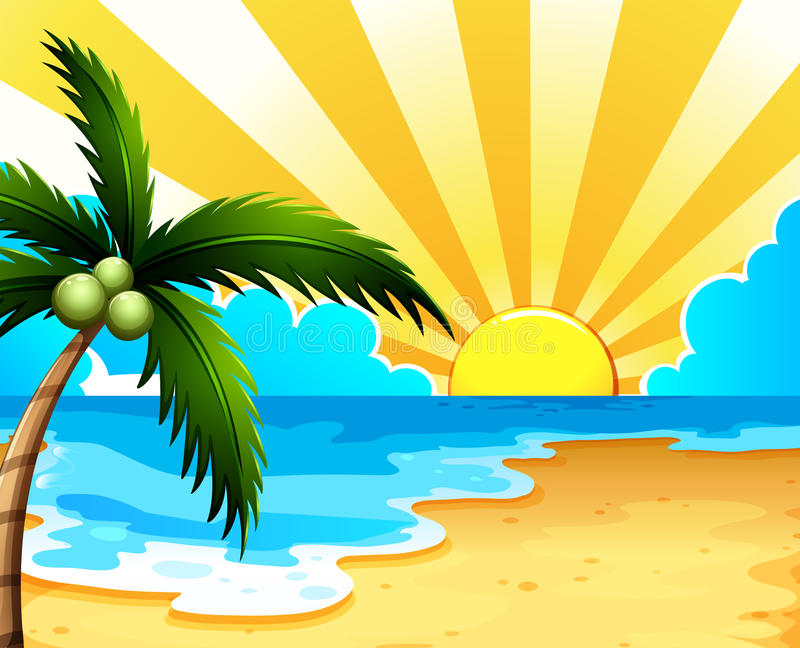 A beautiful beach with a coconut tree stock illustration