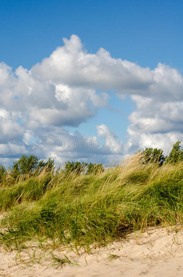 Beautiful beach day in Indiana. Beautiful landscape of the Indiana dunes beach. with fluffy white clouds and tall grass swaying in the breeze royalty free stock images