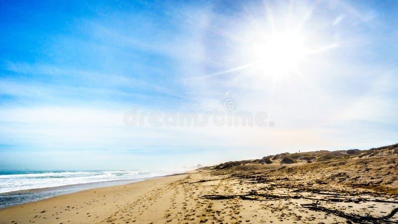 The beautiful beach and dunes of Bloubergstrand stock photo