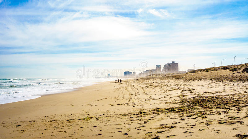 The beautiful beach and dunes of Bloubergstrand stock photography