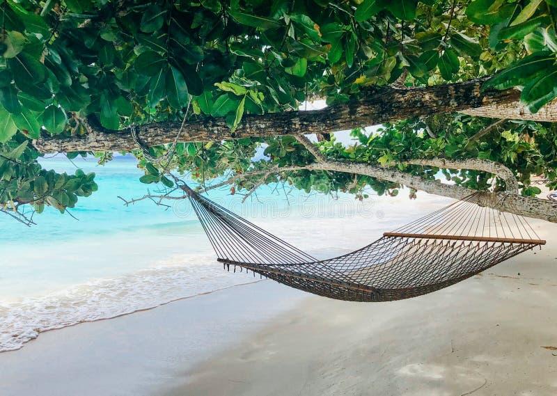 Seychelles Silhouette Island beach. stock photo