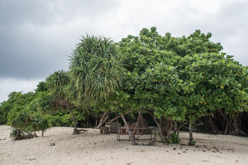 Beautiful beach landscape during rainy season time with trees and bushes at the tropical island royalty free stock image