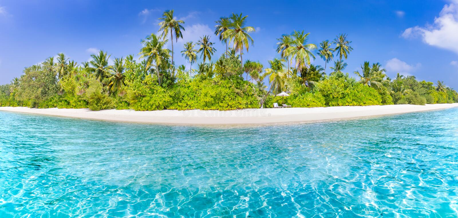 Tropical beach banner and summer landscape background. Vacation and holiday with palm trees and tropical island beach. Beautiful beach landscape. Tropical nature royalty free stock image