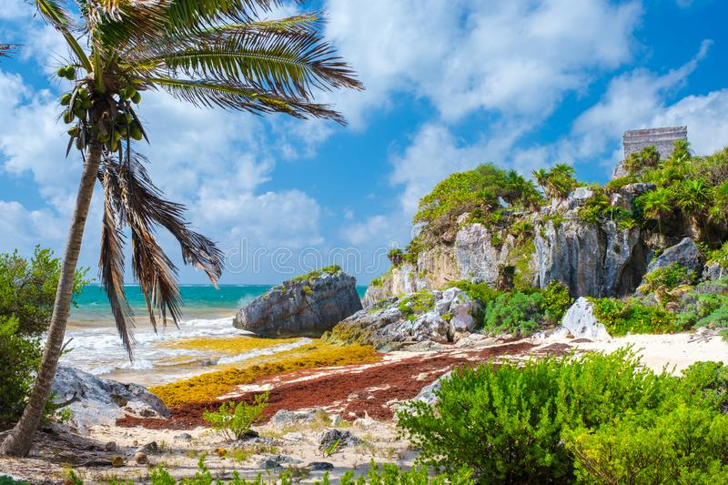 Beautiful beach and mayan ruins on a cliff at Tulum in Mexico royalty free stock photography