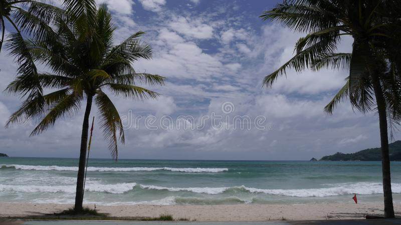 Beautiful beach with palm trees and blue sea royalty free stock photography