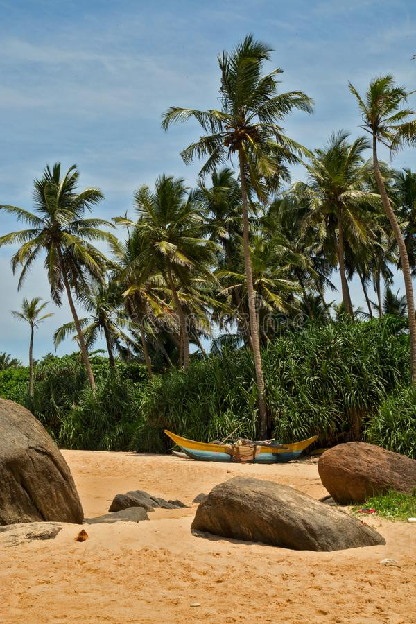 Beautiful beach with palm trees and boulders on the tropical island of Sri Lanka. Vertical royalty free stock photos