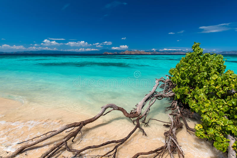Beautiful beach. royalty free stock photos