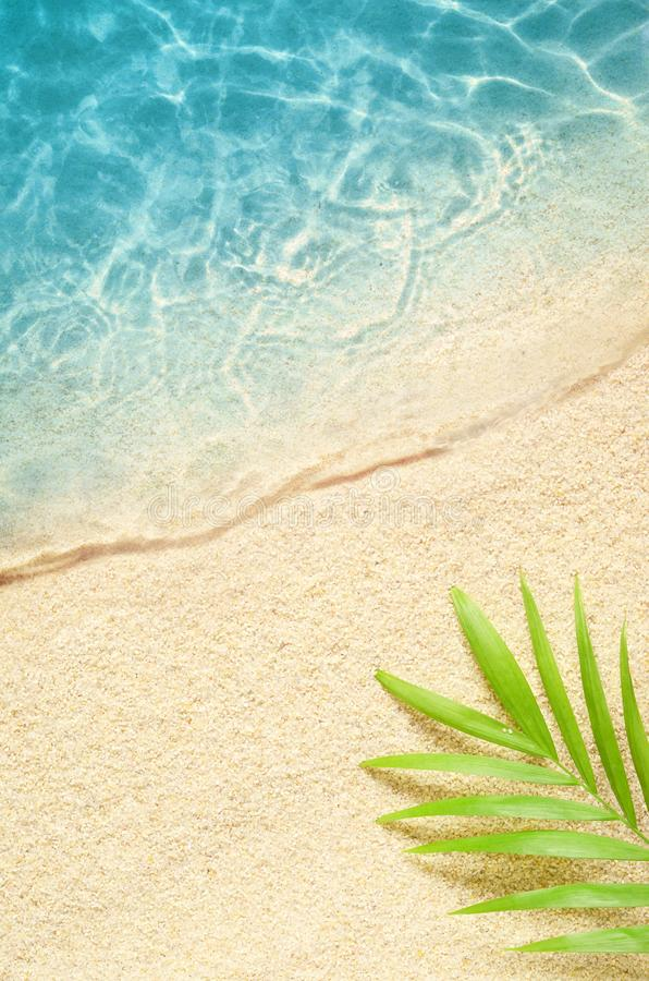Beautiful beach with white sand palm leaf and clear blue sea. Top view.  royalty free stock images