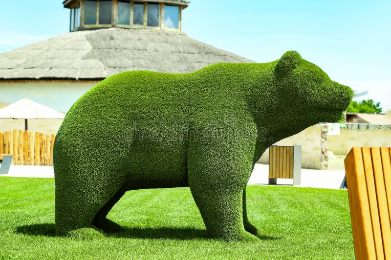 Beautiful bear shaped topiary at zoo. Landscape gardening. Beautiful bear shaped topiary at zoo on sunny day. Landscape gardening royalty free stock photography