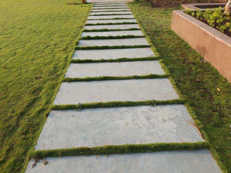 A beautiful stone path between beautiful green grass royalty free stock photo