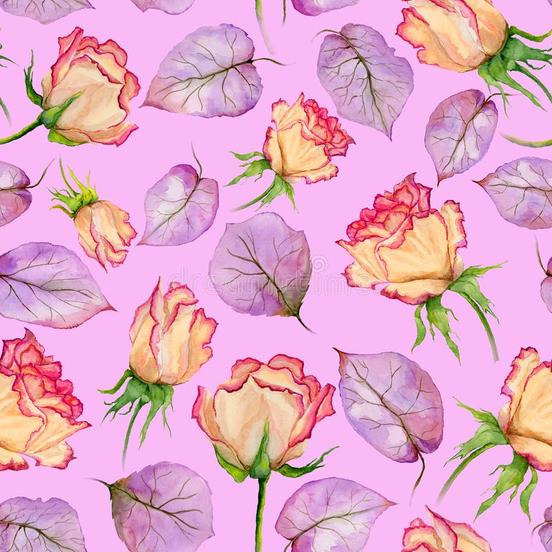 Beautiful beige and red roses and purple leaves on pink background. Seamless floral pattern. Watercolor painting. stock illustration