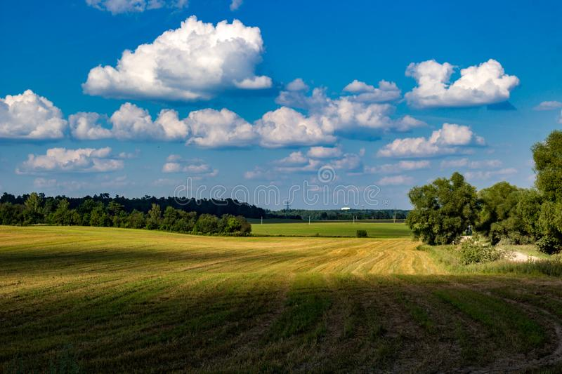 Beautiful beveled agricultural field. Against a blue sky with clouds stock photo