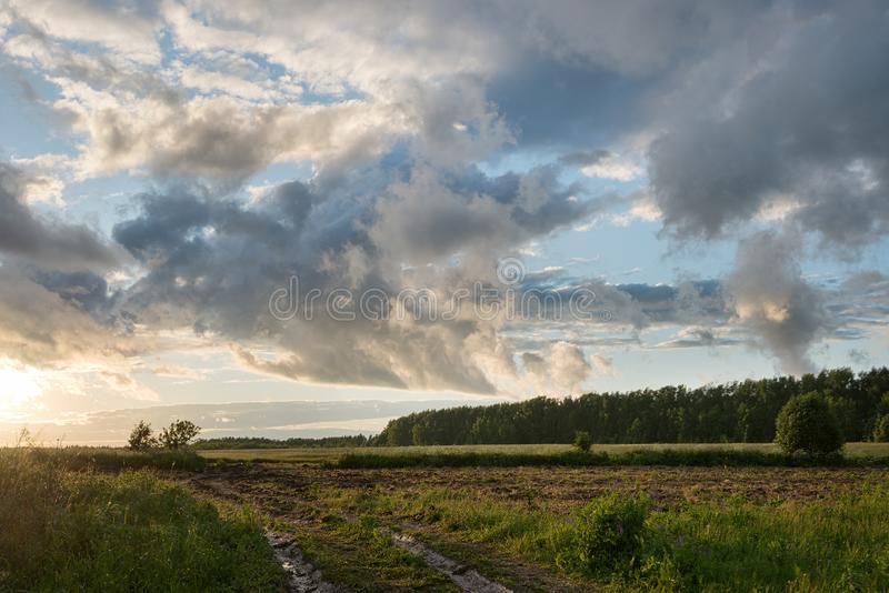 Beautiful big clouds. Field after the rain and beautiful big clouds and clouds at sunset stock images