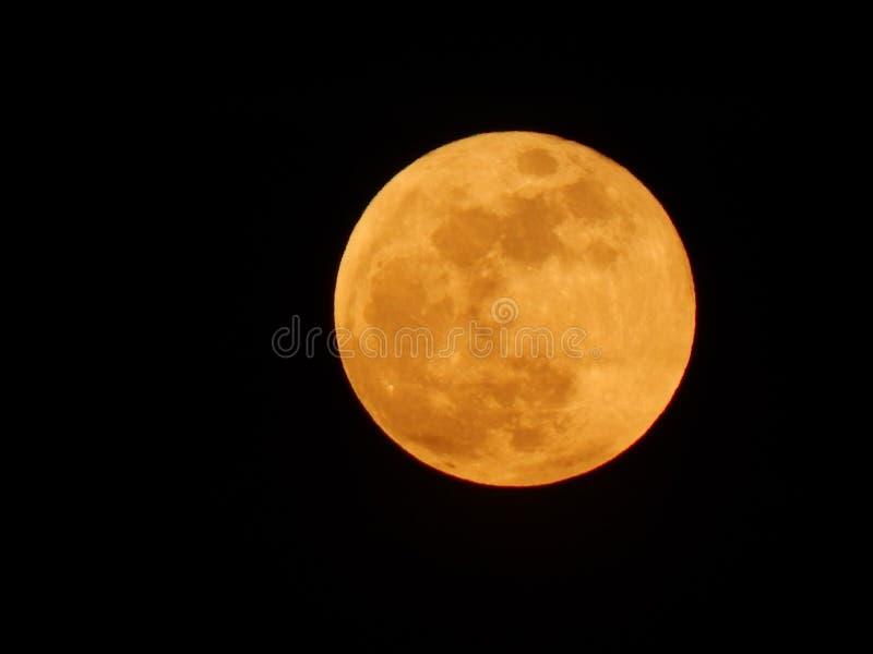 Beautiful big full moon close-up with black sky stock image
