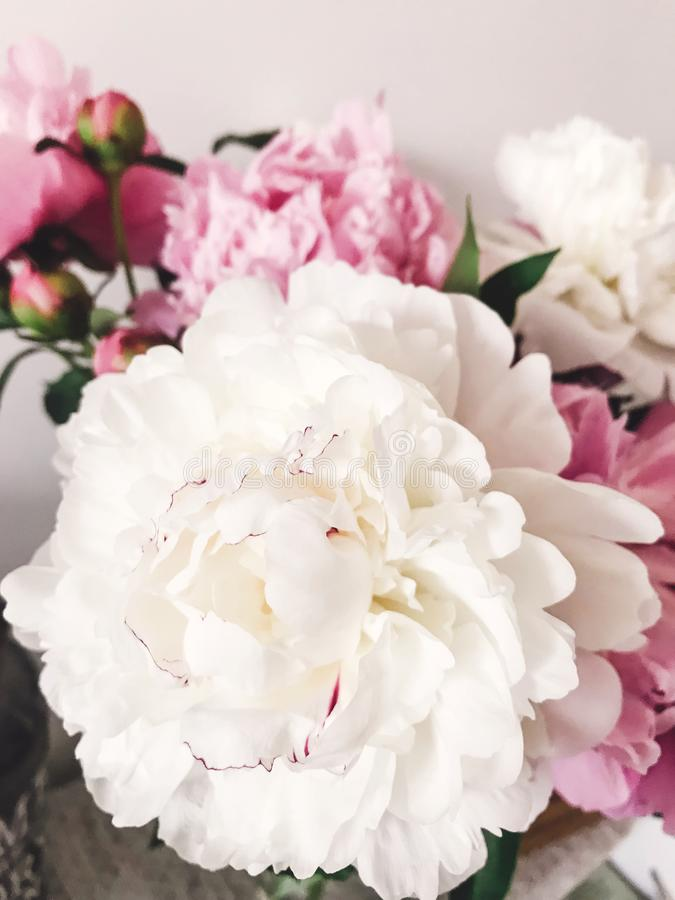 Beautiful big white peony and pink peonies in vase on stylish nightstand. Hello spring. Happy Mothers day royalty free stock photography