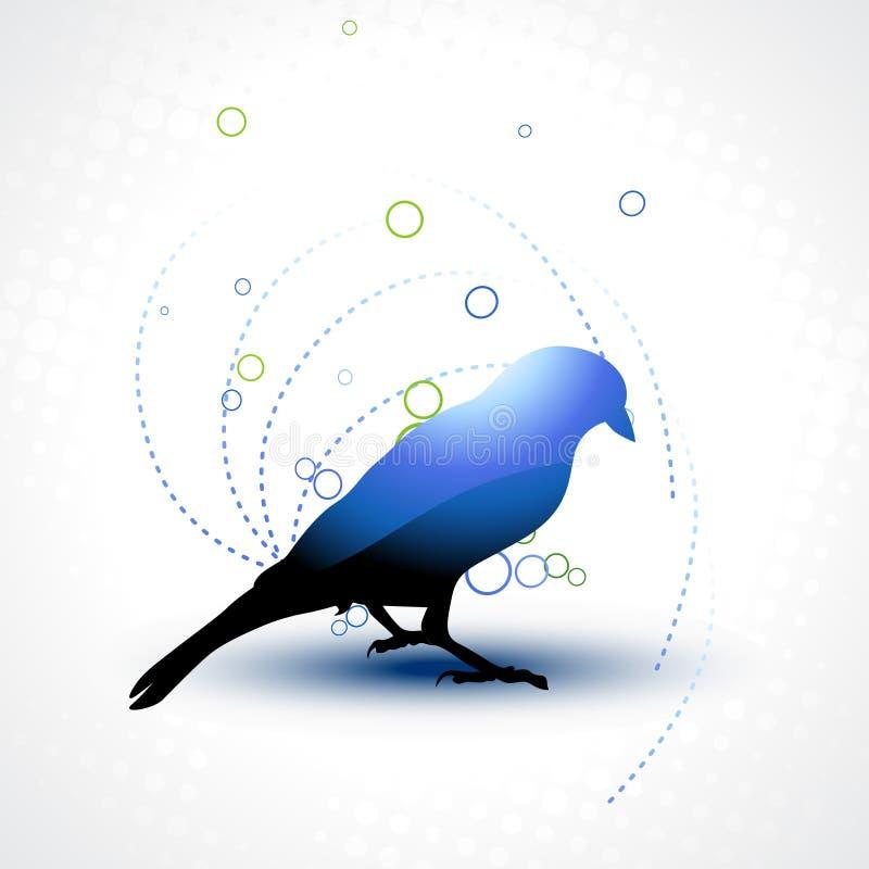 Free Beautiful Bird Stock Photos - 14093503