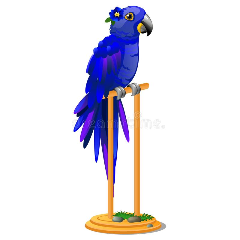 Beautiful bird blue parrot sitting on a wooden perch isolated on white background. Vector cartoon close-up illustration. stock illustration