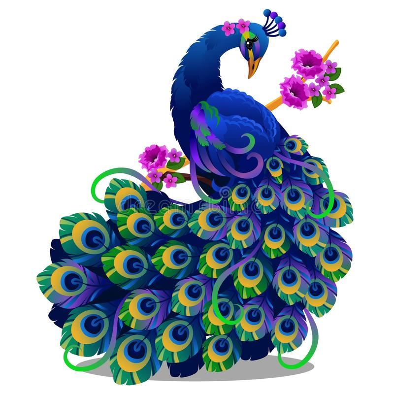 Free Beautiful Bird Peacock Sitting On A Perch With Flowers Isolated On White Background. Vector Cartoon Close-up Royalty Free Stock Images - 128101819