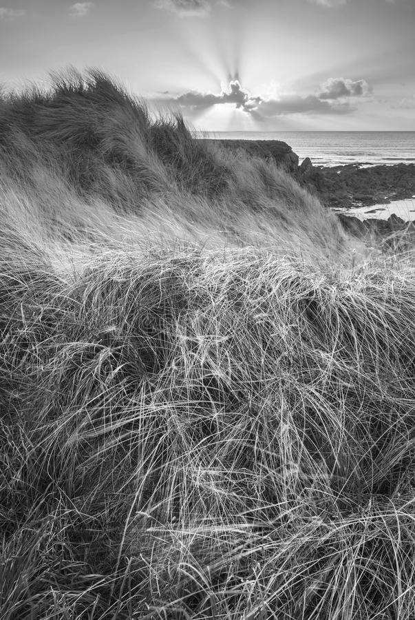 Beautiful black and white landscape image of Freshwater West beach with sand dunes on Pembrokeshire Coast in Wales stock image