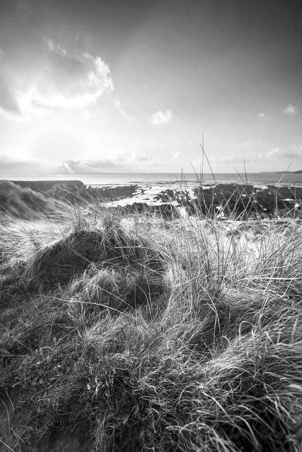 Beautiful black and white landscape image of Freshwater West beach with sand dunes on Pembrokeshire Coast in Wales royalty free stock photos