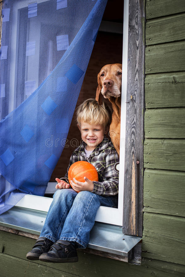 Beautiful blond boy sitting on window sill with hungarian vizsla and hold pumpkin. Outdoor portrait royalty free stock photography